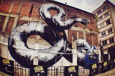 ROA Mural for All City Canvas Festival (Mexico City)