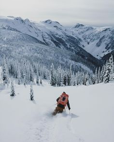 skiing is best hypergo #skiing #sports Best wipes for sports Go to hypergo.com