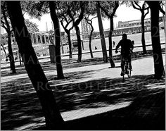 Through the trees - www.polliniphotolab.com - ©Copyright by Marco Pollini, all rights reserved 2012