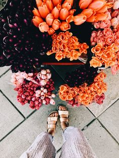 Floral ideas and inspiration. May Flowers, Fresh Flowers, Wild Flowers, Beautiful Flowers, Orange Flowers, Fleur Orange, Flower Cart, Plants Are Friends, No Rain