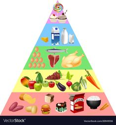 Food pyramid chart vector image on VectorStock Healthy Eating Pyramid, Healthy And Unhealthy Food, Food Icon Png, Food Icons, Nutrition Plate, Health And Nutrition, Food Pyramid Kids, Cooking Joy, Food Clipart