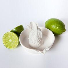 bird bath juicer #playful #birds #cookinggadgets dotandbo.com