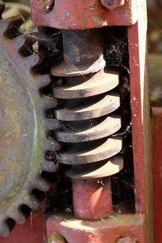 gear and worm screw