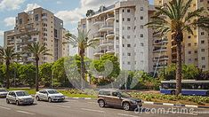 Holon, Israel - May 26, 2016: View of Golda Meir Street. There are cars, white-blue bus moving on wide road and four palm trees growing on green belt in the center of it. Three multi-story residential buildings are can be seen in the background. Two unidentified men walking on the street surrounded by lush trees. Bright summer day. Horizontal shot.