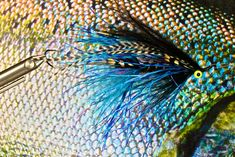 Sea Run Cutthroat flies – favorite fly styles Note: This is a preview of more to come, think about 2011 as time to dig deeper into the lives and flies of Sea Run cutthroat. Everyone who fishes Sea…