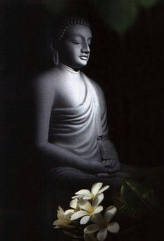 osho,scriptures-This statement of Gautam Buddha is one of the milestones in the history of human growth: Appa deepo bhava – be a light unto yourself. Art Buddha, Buddha Artwork, Buddha Peace, Buddha Painting, Amitabha Buddha, Gautama Buddha, Buddha Buddhism, Buddhist Art, Buddhism Wallpaper