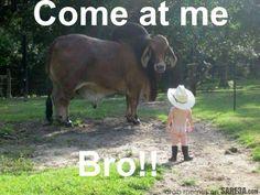 Come at Me Bro…