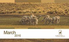 #Michell #Calendar- #AndeanHeritage #Colour #Inspiration - March 2016 #alpaca #alpacayarns #finestperuvianalpaca