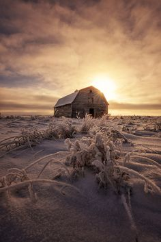 Inhale the cold. Canadian Winter, Canadian Travel, Beautiful Sites, Beautiful Places, Alaska, Farm Images, Ghost House, Saskatchewan Canada, Foster Cat