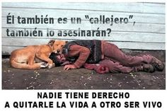 "He is also""from do they'll kill him too? No one has the to take another's life. Best Friends, Signs, Angel, Street, Frases, Unconditional Love, Female Assassin, Animals And Pets, Pictures"