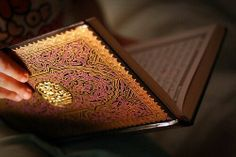 """Der Gesandte Allahs Allahs Frieden und Segen auf ihm sagte: """"Der wahre Gläubige steht dem anderen Gläubigen bei, als wären sie ein fest gefugter Bau: jeder Teil hält und verstärkt den anderen."""" Um dies zu verdeutlichen verschlang der Prophet (Sallallahu Alayhi wa Sallam) die Finger einer Hand mit denen der anderen.  (Al-Bukhari und Muslim)"""