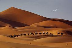 Diez impresionantes paisajes de dunas · National Geographic en español. · Actualidad Viajera  Erg Chebi. Marruecos  La joya del Sahara marroquí, este dunar de unos 22 kilómetros longitud, situado en el este del país, alberga dunas de hasta 150 metros de altura. La ruta a través de estas arenas doradas es una gran experiencia, con sus noches estrelladas que se disfrutan envueltos en el absoluto silencio.