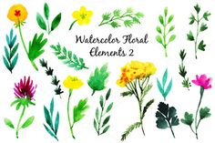 Check out Vector watercolor flowers and leaves by alexandra.dzh on Creative Market