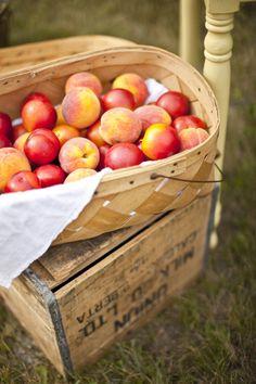 peaches + nectarines | Genevieve Renee Photographie #wedding