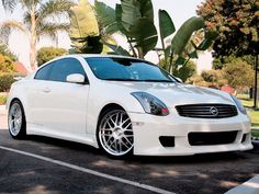 Infiniti g35 There are very few cars I would consider driving. This is one of them. It is comfortable and handles well.