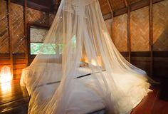 Mosquito Nets Over Resort BedMalaria Precautions