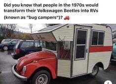 Vw Bugs, Beetle, Recreational Vehicles, Volkswagen, Camper, Halloween, June Bug, Caravan, Beetles
