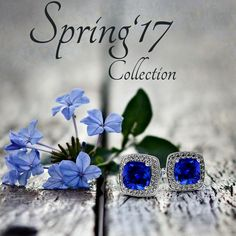 Collection which you love's.