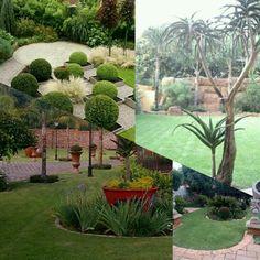 Landscaping Centurion, Designer Gardens Landscaping www.designergardenlandscaping.co.za Garden Landscaping, Swimming Pools, Garden Design, Gardens, Landscape, Plants, Front Yard Landscaping, Swiming Pool