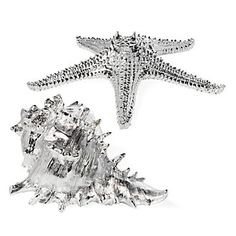 Whelk Shell & Starfish | Decorative-accessories | Accessories | Z Gallerie