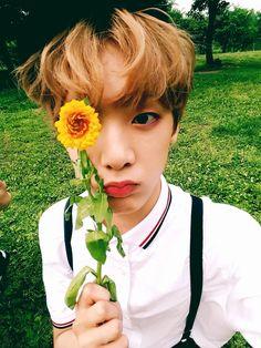 Sanha from ASTRO He is such a precious darling! Beagle, Seoul, Kim Myungjun, Astro Sanha, Pre Debut, Korean Bands, Cha Eun Woo, Minhyuk, Vixx