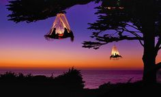 Tree camping, Pacific Coast, Elk, CA. Photo by Louie Psihoyos.