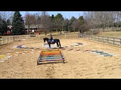 What's in Your Arena? Presented by Attwood: Cavaletti Chaos | Eventing Nation - Three-Day Eventing News, Results, Videos, and Commentary