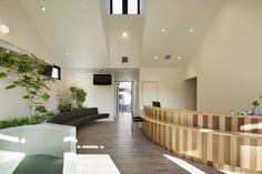 Gallery of Castle Town Orthodontic Bruno / TSC Architects - 2