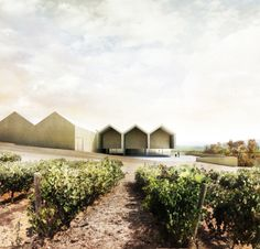 Winery in Samaniego by Estudio AGraph , via Behance