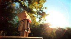 50 Adorable Photographs of Danbo Cardboard Robot