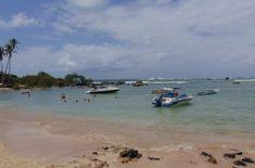 ¿Qué hacer en Salvador de Bahia? | GUIA DE VIAJE 2020 Beach, Outdoor, Brazil, El Salvador, Voyage, Cities, Outdoors, Seaside, The Great Outdoors