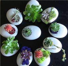 Nest Artificial Resin Flowers Succulent Plants Flower Pot Cactus Planter