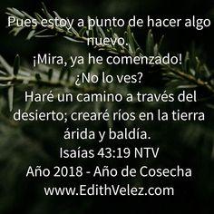 Este nuevo Año será Espectacular ¡NO LO DUDES!