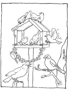 Feeding birds in your garden coloring page Bird Coloring Pages, Coloring Pages For Kids, Coloring Sheets, Coloring Books, Bird Embroidery, Embroidery Patterns, Cute Bee, Bird Theme, Bird Art