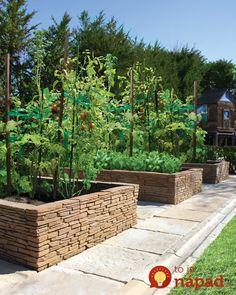 Títo manželia si z lacnej záhradnej dlažby vymysleli krásny nápad. Vytvorili totiž dlhý vyvýšený záhon – alebo dlhý črepník, v ktorom pestujú svoje obľúbené záhradné rastlinky. Okrem toho je tiež domovom pre vtáčiky, ktoré vo svojej záhrade vždy radi uvítajú. To však ani zďaleka nie je všetko, toto všetko – okrem chodníka – môžete zo...