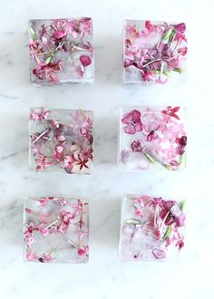 Over 50 summer recipes and ice cube creations protect you from the summer heat … 2019 – Sommer Garten Hochzeits Kleider Flower Ice Cubes, Jillian Harris, A Little Party, Ice Cube Trays, Edible Flowers, Summer Heat, Summer Recipes, Cookies Et Biscuits, Diys