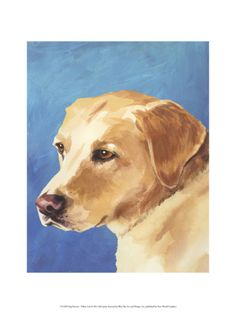 Dog Portrait, Yellow Lab Giclee Print by Jill Sands at Art.com