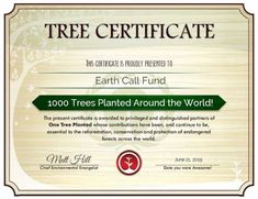 Help plant trees in British Columbia: one dollar plants one tree. Insect pests, diseases and wildfires have decimated enormous areas of forest. Donate today and help to support reforestation projects in BC. Hakuna Matata, Ubud, British Columbia, Chakra, Meditation Musik, Bali, Energy Industry, Insect Pest, Tree Of Life