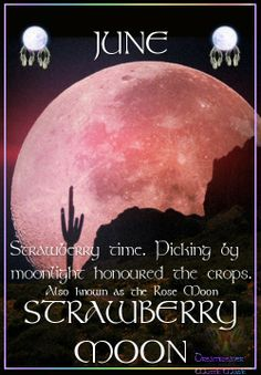 Strawberry Full Moon Friday June Picture For Full Article. This is hilarious because my last name is strawberry in french and my bday is June Moon Moon, Moon Phases, Blue Moon, Moon Art, Full Strawberry Moon, Strawberry Picking, Full Moon Ritual, Moon Magic, Sabbats