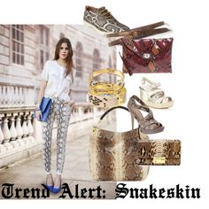 #Trendalert: #Snakeskin    #Fashion #Polyvore #looks @Michael Kors   @French Connection  @ALDO Shoes @Club Monaco @Coach, Inc.  #Guess