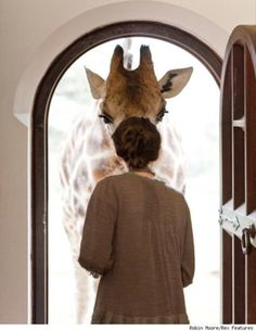 In my Ideal Home, I would be greeted daily by a giraffe.