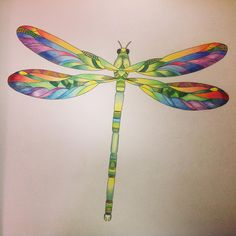 coloured pencil - watercolour - dragonfly