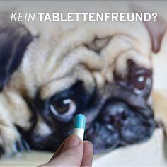 Hundebesitzer kennen folgende Situation wohl nur zu gut: Dem vierbeinigen Liebling muss eine Tablette, Kapsel oder Ähnliches verabreicht werden und obwohl er sonst frisst wie ein Staubsauger, will er das Medikament bzw. die Futterergänzung partout nicht schlucken. Was tun? Dog Owners, Vacuum Cleaners