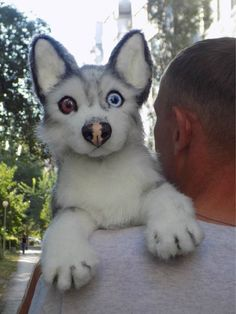 Siberian Husky Scarecrowdogooak Handmade Gifts Animal Art - Siberian Husky Scarecrowdogooak Handmade Gifts Animal Art Doll Kawaii Plush Poseable Doll Small Make One Special Photo Charms For Your Pets Compatible With Your Pandora Bracelets Cool Kittens Cute Funny Animals, Cute Baby Animals, Animals And Pets, Small Animals, Beautiful Dogs, Animals Beautiful, Beautiful Pictures, Dogs Funny Husky, Husky Dog