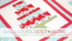 Welcome to the Snapshots Quilt Along benefiting St. Jude Childrens Research Hospital!