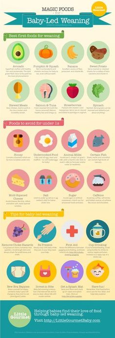 Best first foods, foods to avoid & BLW tips [INFOGRAPHIC: The Magic List of Baby-Led Weaning Foods]