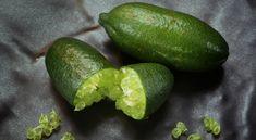 {save} more than natural skin care – {save} more than natural skincare Exotic Food, Exotic Fruit, Caviar Lime, Sweet Lime, Lime Recipes, Sour Taste, Kaffir Lime, Colorful Fruit, Lemon Lime