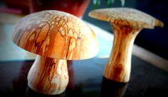 Luovuuden pistos / Sting av kreativitet: Sienet on kauniita / Svampar är vackra.