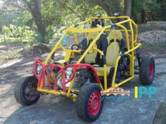 Things to Do: Dune Buggy Adventures in Puerto Plata