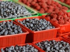 July: National #Blueberry Month #tips